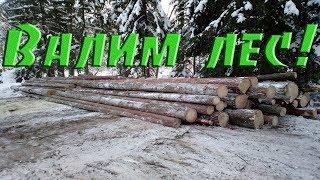 Валим и вытаскиваем лес