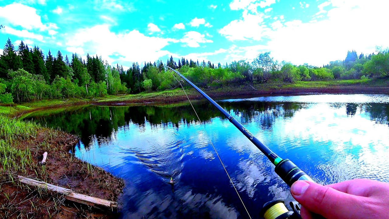 Рыбалка на спиннинг на таёжной речке.Рыбы много, но..........