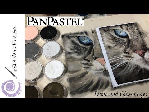 LIVE DEMO    PanPastel Cat Eyes And Fur And 3 PanPastel Give-aways