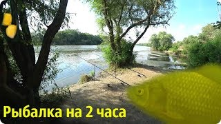 Рыбалка на 2 часа, Днестр 51 км.  20.06.2019.  Караси и Тарань на кукурузу.