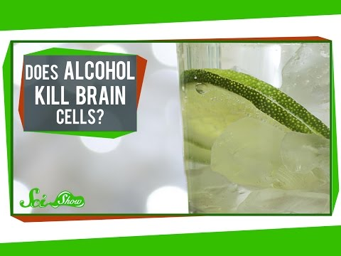 Does Alcohol Kill Brain Cells?