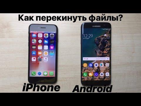 Как перекинуть файлы с IPhone на Android?
