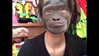 Khỉ đột thu hoài