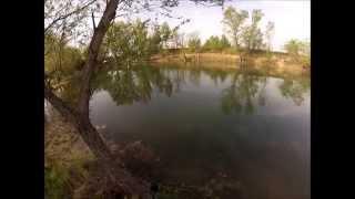 Feketesügér horgászat (Peremvárosi Horgásztó)