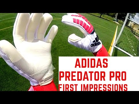 New Adidas Predator Pro Goalkeeper Gloves First Impression