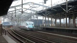 JR東日本東北新幹線E5系+E6系はやぶさ46号通過(那須塩原)