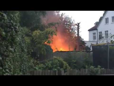 Sean's Kitchen Garden #264: LIVE FIRE ALERT! (Part 1 of 2)