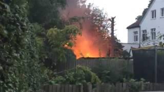 Sean's Kitchen Garden: LIVE FIRE ALERT!