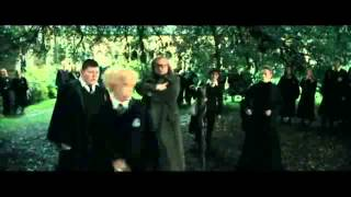 Draco Malfoy is a polecat! HP4