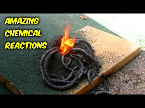 Ammonium Dichromate and Black Snake