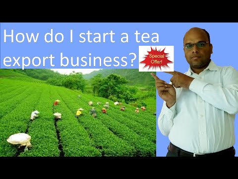 how-do-i-start-a-tea-export-business?