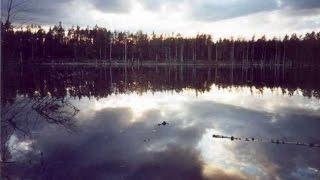 Жизнь после людей - Воды смерти