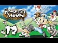 Let S Play Harvest Moon SNES 12 mp3