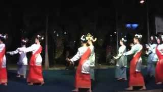 Tandak Sambas (Tari Tradisional Melayu - Kalbar)