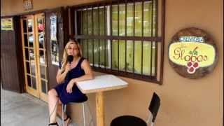 Ensenada Wine with Mariana Hammann