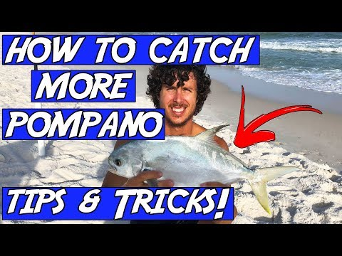 How To CATCH POMPANO While SURF FISHING! Pompano Fishing Tips & Tricks