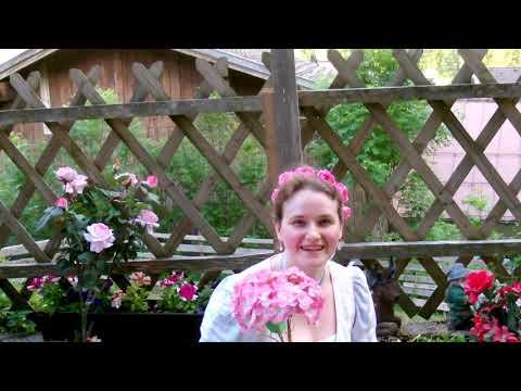 Liliane Scharf -A bisserl Z´friedenheit -Ein bisschen Zufriedenheit