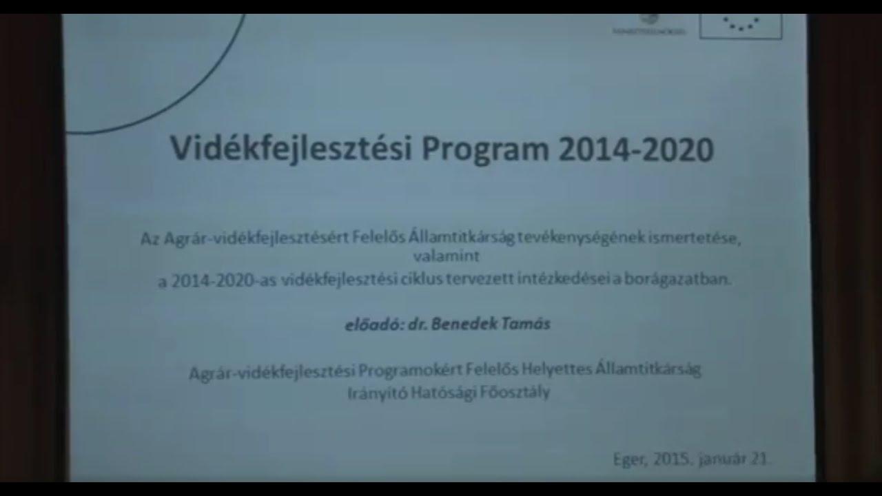 lehetőségek 2020