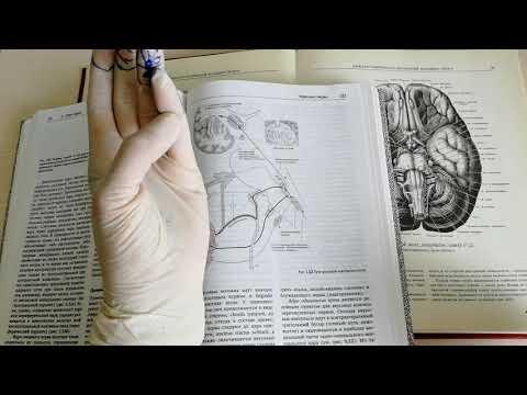 Лечение пареза лицевого нерва методом су джок.