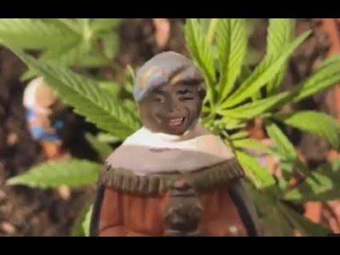 y el negro trae Marihuana!...