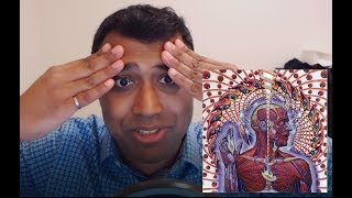 Tool - Lateralus - REACTION ANALYSIS!