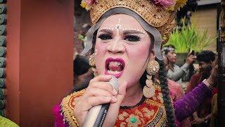 Download lagu Lucu Liku   Kartono Bondres Royal Wedding , Resepsi dihibur Lawak Bali