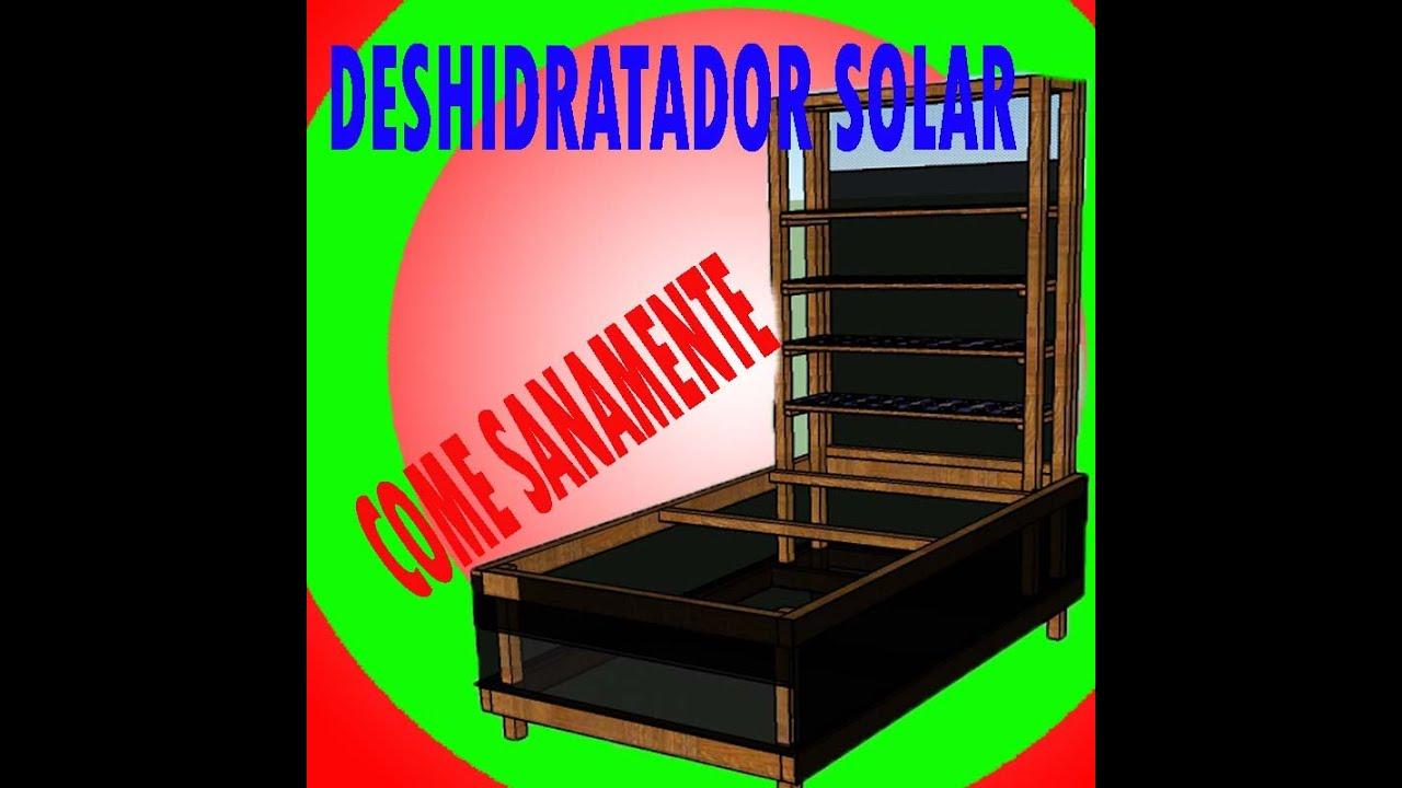 Deshidratador de fruta casero solar paso a paso con for Construir piscina natural paso a paso