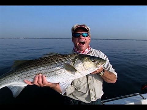 Hudson River Fishing in a Bay Boat for Striper in NYC