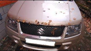 Что произошло с капотом после 10 лет езды с мухобойкой/ Бортжурнал Suzuki Grand Vitara