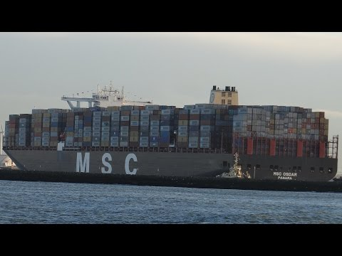 MSC Oscar, world