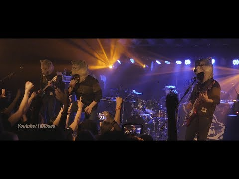 """MAN WITH A MISSION (live) """"Dog Days"""" @Berlin June 24, 2017"""