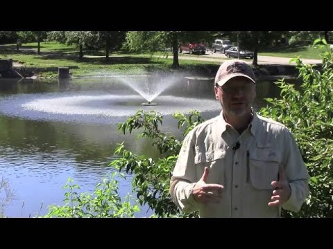 The Benefits Of Adding A Pond Fountain To Your Pond Or Lake