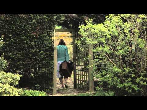 John Banville - Ancient Light
