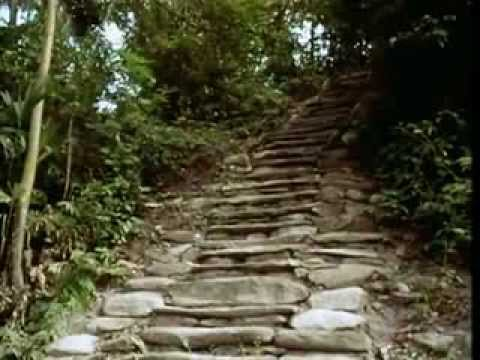 La Ciudad Perdida (The Lost City) | From the Heart of the World - The Elder Brother's Warning