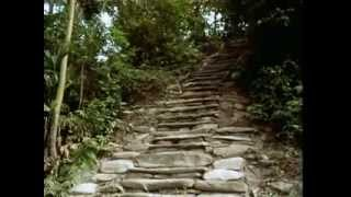 La Ciudad Perdida (The Lost City) | From the Heart of the World - The Elder Brother