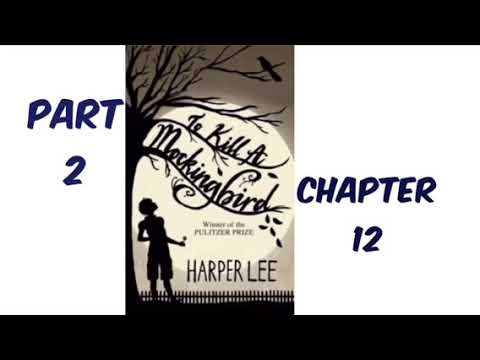 To Kill A Mockingbird By Harper Lee Part 2 Chapter 12 Audiobook Read Aloud