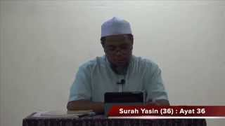 Tadabbur Surah Yasin 36/ : Ayat 36