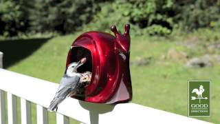 Good Directions E05r Enchanted Bird Feeder - Ruby Red Snail