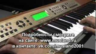 Обзор цифрового пианино ORLA Stage Ensemble функция автоакомпанимента вар.1