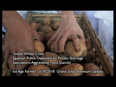Egypt: Police for Potato Shortage - GLOBAL WHEAT CRISIS - Speculators Aggravating Food Scarcity