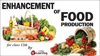 Strategies for Enhancement in Food Production for XII Standard and Medical Entra