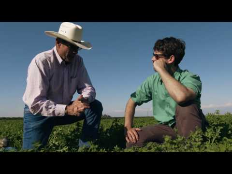 KNOW GMO: Why Farmers Use Chemicals