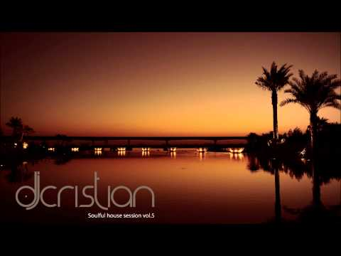 Soulful house session vol.5 (nov. 14) by djcristian