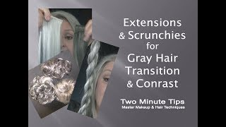 Extensions & Scrunchies for Gray Hair Transition & Contrast - B