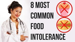 The 8 Most Common Food Intolerance  - You Should Know