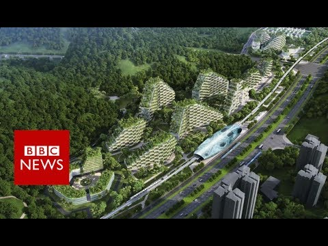China's first forest city - BBC News