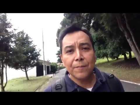 No te des por vencido - Luis Bravo