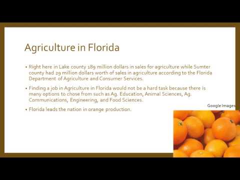 Agriculture at Lake Sumter State College