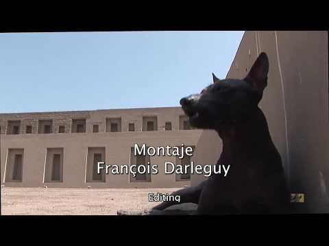 "FILM ""THE PERUVIAN HAIRLESS DOG"" IN PACHACAMAC  - 2017 (VO/EN)"