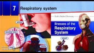 U7.Respiratory System (Уроки английского для медиков) book 1